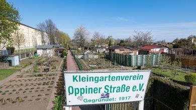 Blick auf den Kleingartenverein Oppiner Straße e.V. in Halle/Saale