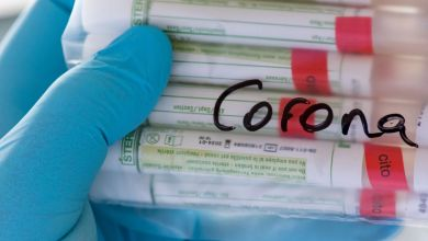 Sachsen, Plauen: Proben für Corona-Tests werden im Diagnosticum-Labor in Plauen für die weitere Untersuchung vorbereitet.