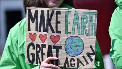 4. globaler Klimastreik am 29. November