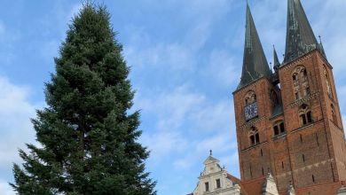 Stendaler Weihnachtsbaum