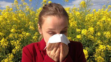 Allergie, Heuschnupfen