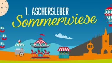 Aschersleber Sommerwiese