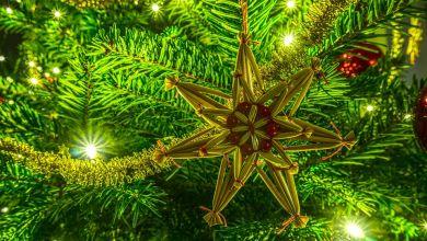 Weihnachtsbaum gewinnen
