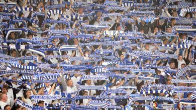 1. FC Magdeburg Fans