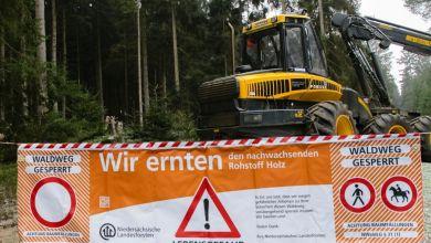 Harzer Wanderweg gesperrt