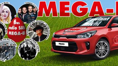 MEGA-EI 2017