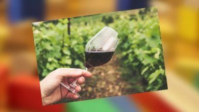Weinglas auf dem Weinhang