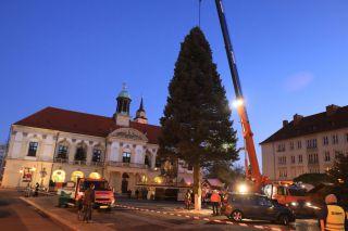 Weihnachtsbaum Magdeburg 2017