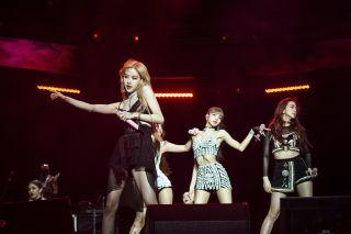 K-Pop Band Blackpink