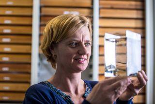 Dr. Doreen Werner