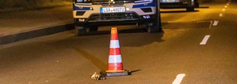 Symbolbild: Polizeiautos aus Sachsen-Anhalt nach einer Verfolgungsjagd