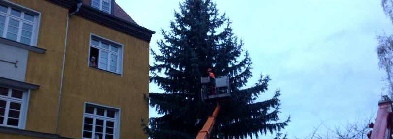 Weihnachts tanne f r halle radio saw - Star wars weihnachtsbaum ...