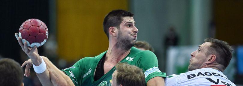 Mirko Mamic