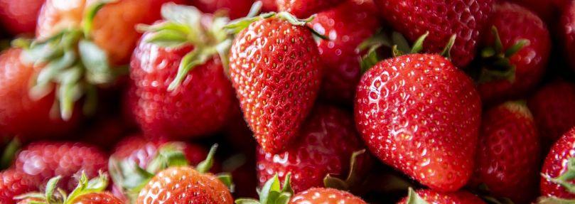 Die Erdbeersaison ist eröffnet!