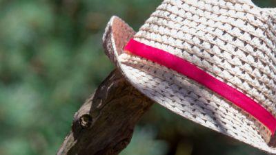 Ein Strohhut einer Urlauberin hängt auf einem Ast