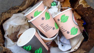 Thale im Harz: Kaffeebecher, die zum Mitnehmen angeboten werden, liegen auf dem Hexentanzplatz weggeworfen, in einem hohlen Stamm eines gefällten Baumes.