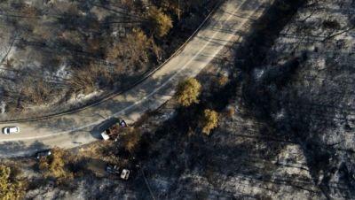 Wald nach Brand in Griechenland