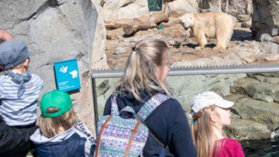 Familien im Zoo