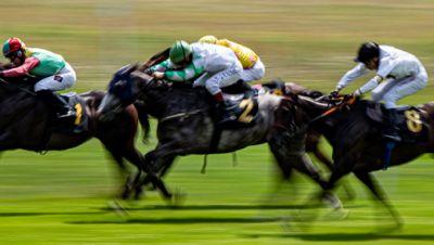 Galopprennen, Pferdesport