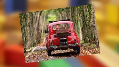 Altes Auto fährt in einer Allee