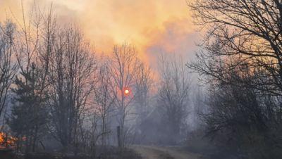 Waldbrände bei Tschernobyl